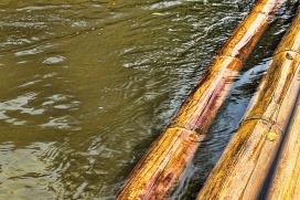 bamboo-870219_640